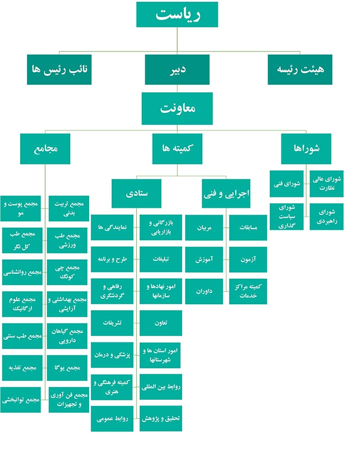 چارتت سازمانی انجمن ماساژ